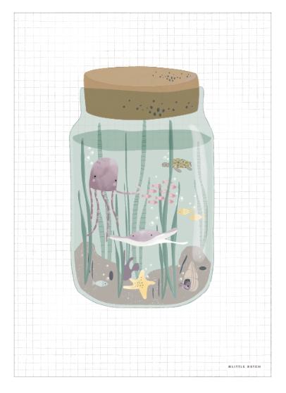 Poster A3 2-seitig Mini Meereswelt