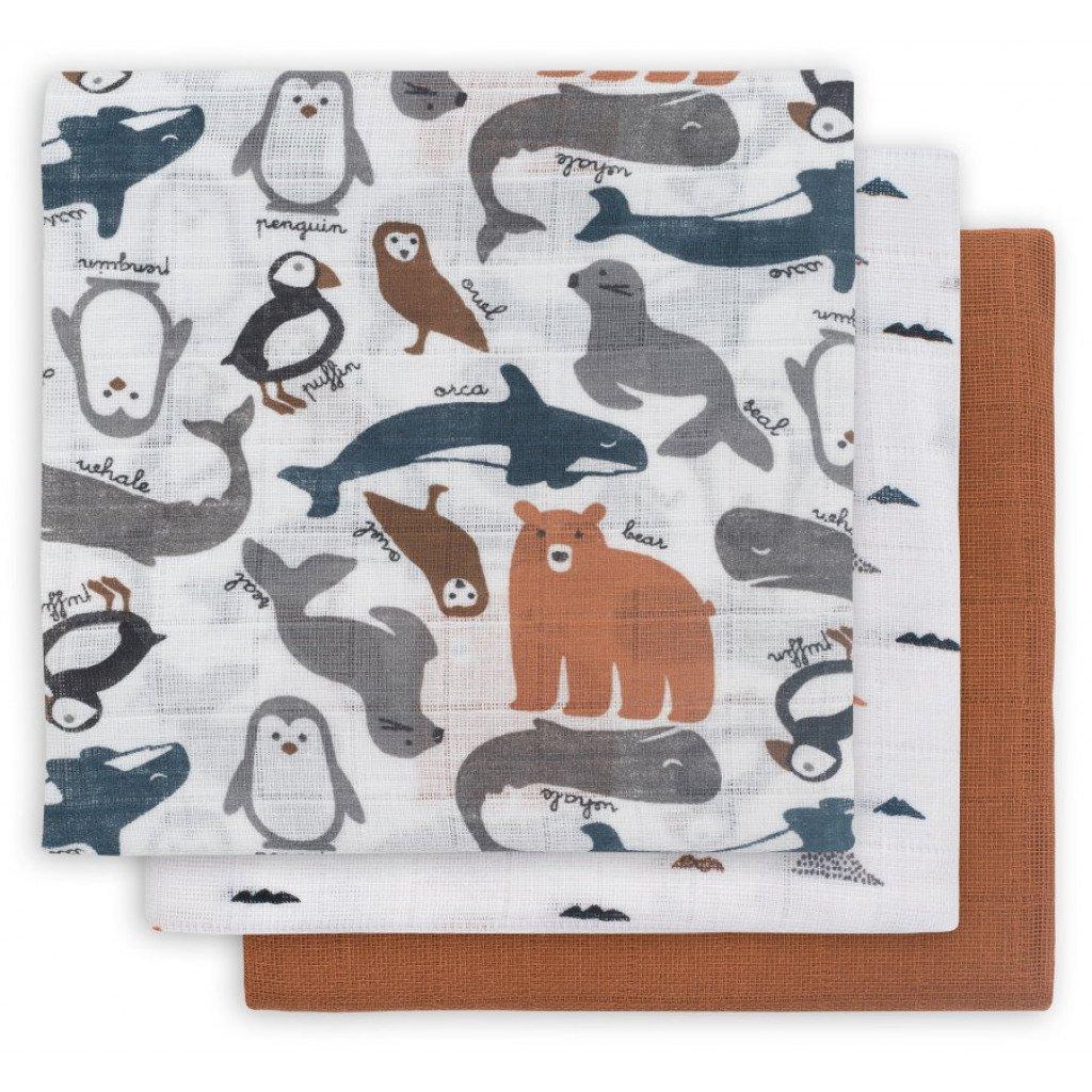 Swaddle Mulltücher 3er Set Polartiere (Gr. 70x70 cm)