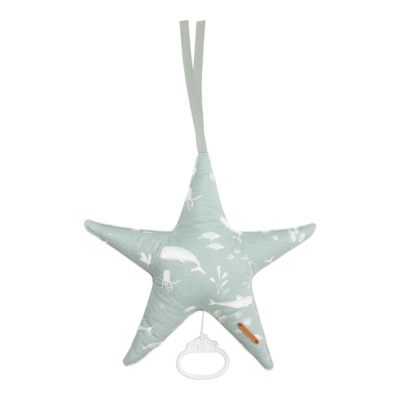 Spieluhr Stern Ocean mint
